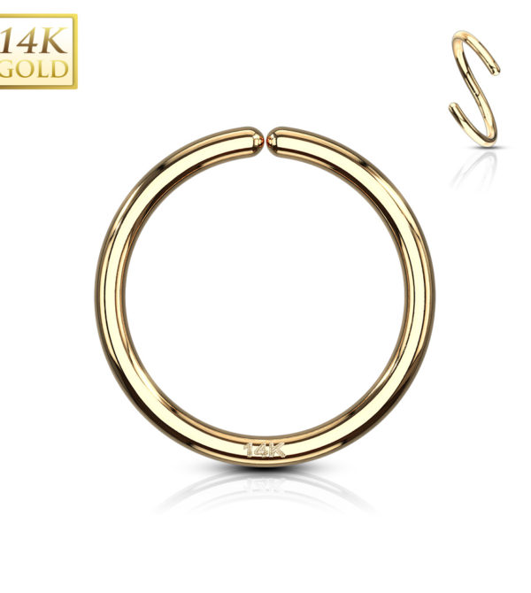 hoop nose ring