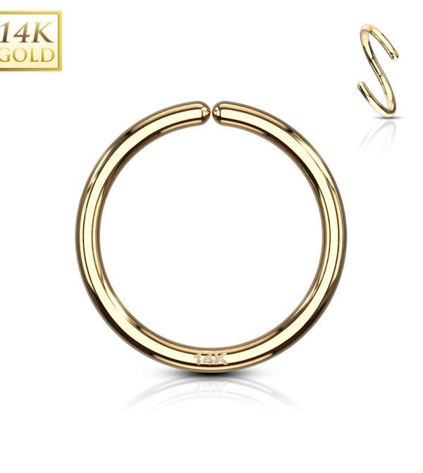 hoop nose ring